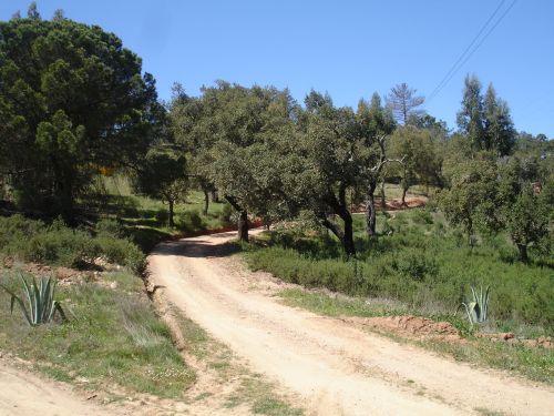 Monte Horizonte