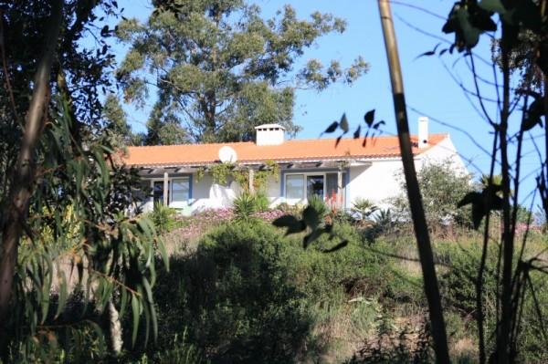 Monte Horizonte Portugal Vakantie