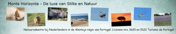 Monte Horizonte Natuurvakantie Portugal