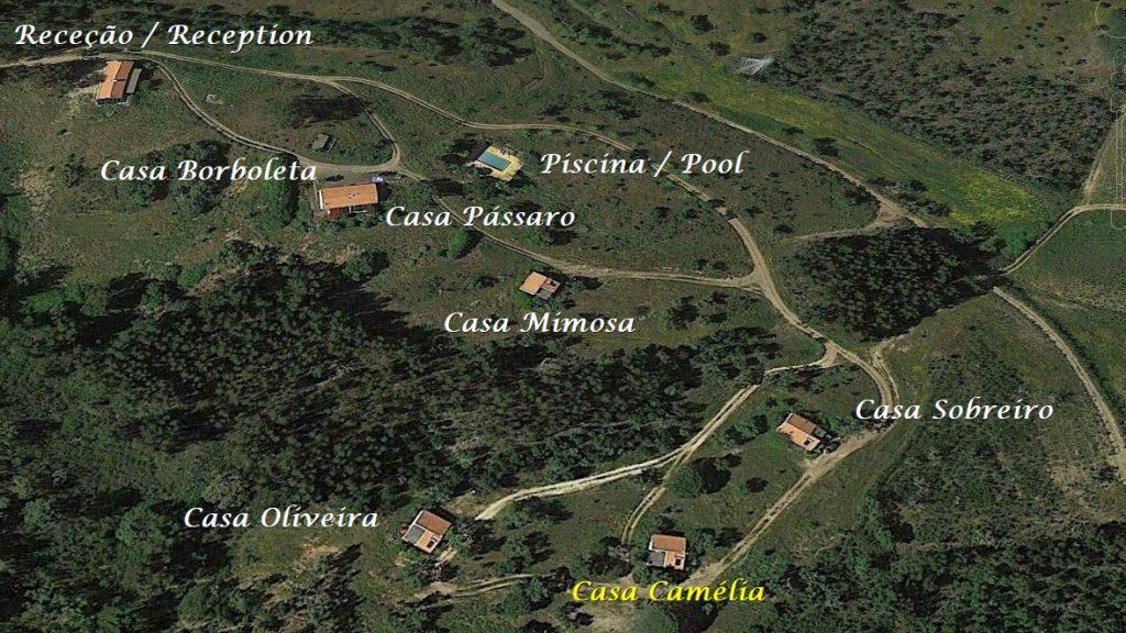 Portugal Vakantie Monte Horizonte Casa Camelia